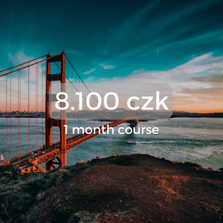 8.100 czk 1 month course